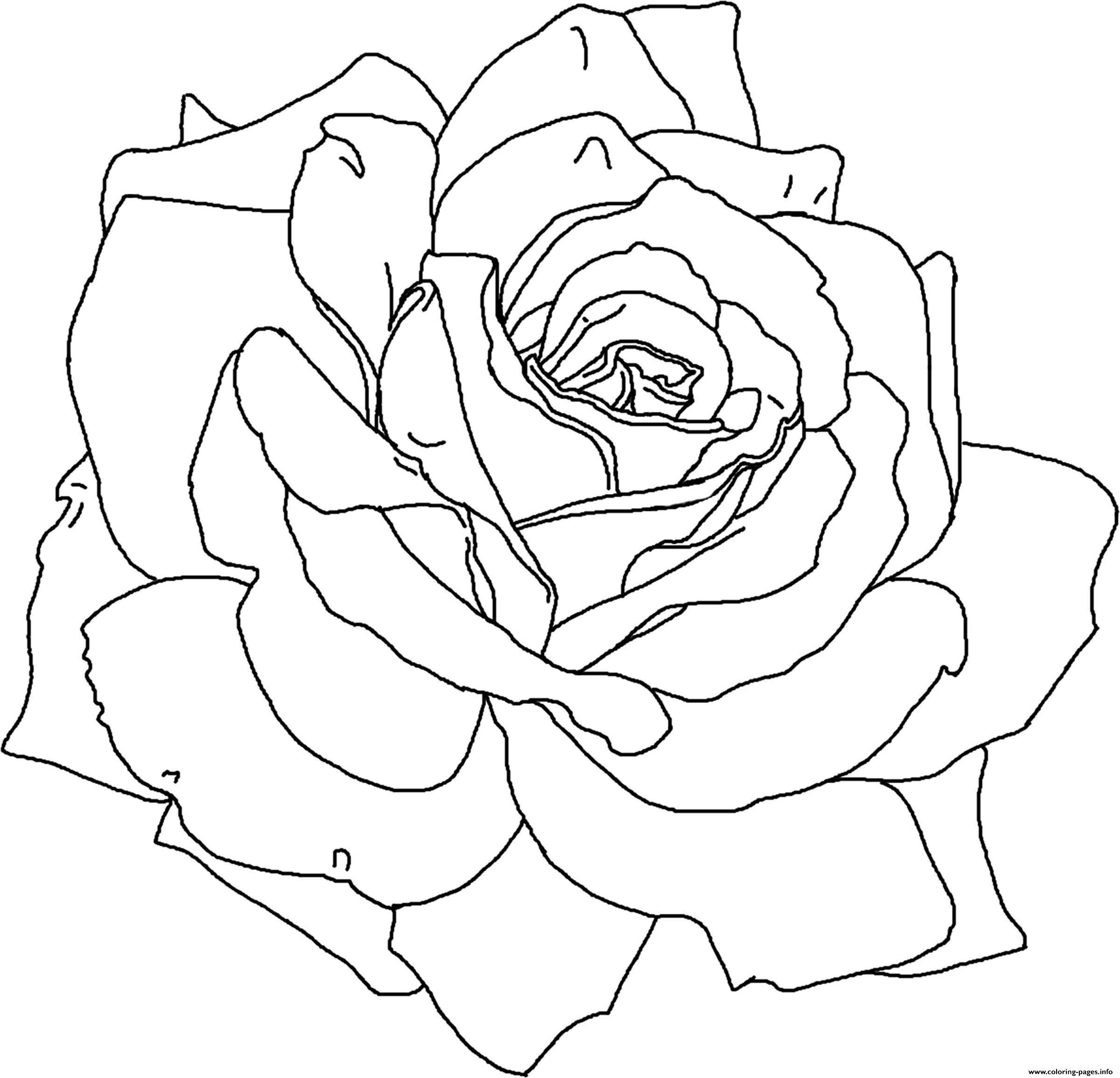 Rose Flower Cute Coloring Pages Printable