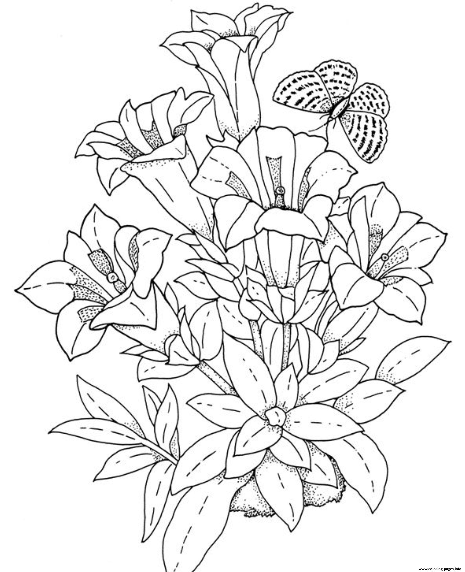 - Realistic Flowers Coloring Pages Printable