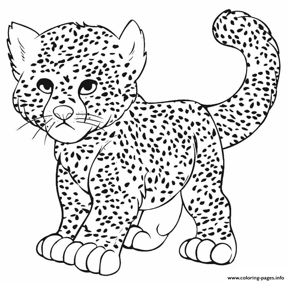 Baby Cheetah Leopard Panther Coloring Pages Printable