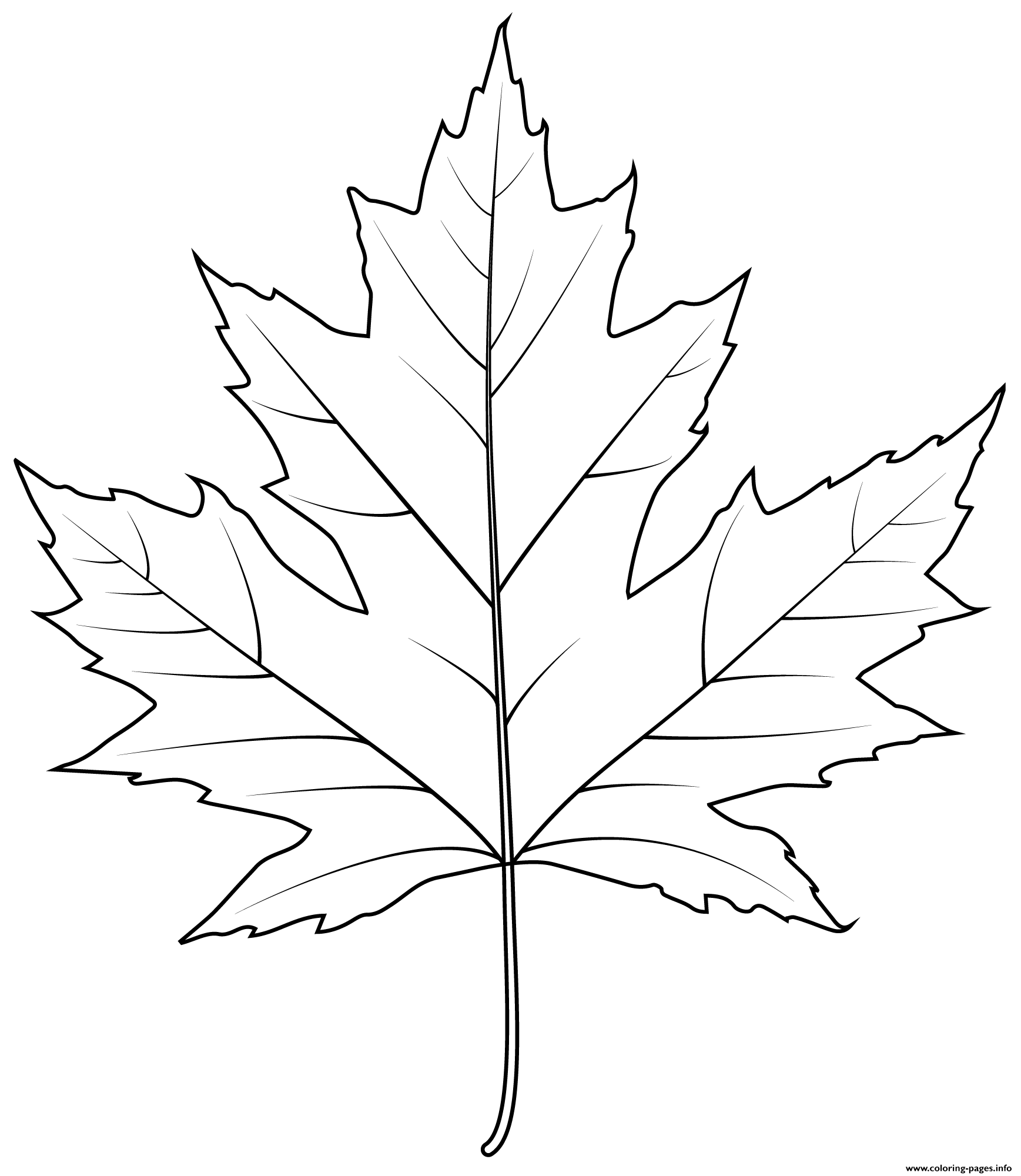 Silver Maple Leaf Coloring Pages Printable