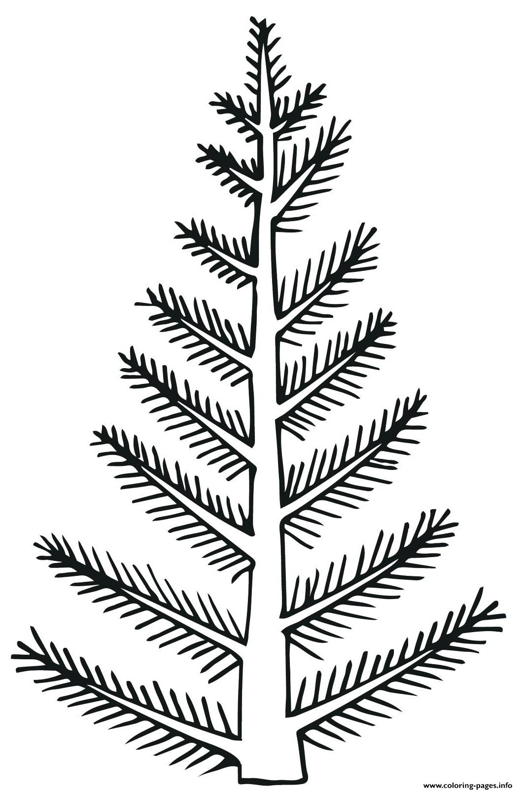 Simple Natural Blank Christmas Tree Coloring Pages Printable