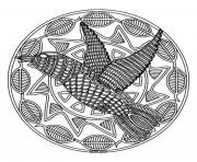 free mandala difficult adult to print bird