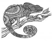 Printable adult cameleon patterns coloring pages