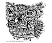 Printable adult owl big eyes coloring pages