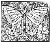 Printable adult difficult big butterfly coloring pages
