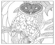Printable adult barn owl by mizu coloring pages