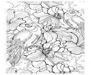 Printable adult parrot difficult coloring pages