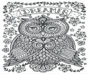 adult owl dreamer coloring pages