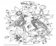 Printable adult two birds coloring pages