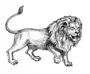 Printable adult africa lion coloring pages