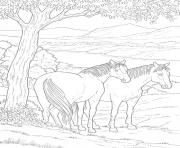 Printable friendly educational horse sbf8b coloring pages