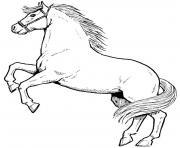 Print awesome horse sb2a4 coloring pages