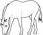Printable horse eating saf3d coloring pages