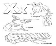 Print words of x alphabet sc582 coloring pages