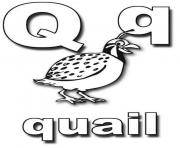 Printable quail alphabet s0053 coloring pages