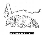 alphabet s printable a for armadillob946 coloring pages