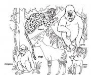 Printable african animal s free4a45 coloring pages
