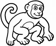 Print monkey  animal77f7 coloring pages
