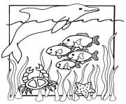 Print kids s of sea animals40a9 coloring pages