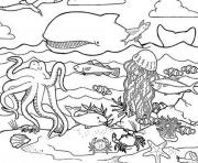 habitat s of sea animalsfca7 coloring pages
