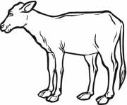realistic calf farm animal sf047 coloring pages