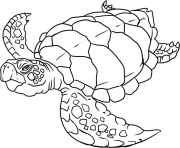 Printable turtle s of sea animalsc3ed coloring pages