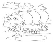 rhino and her baby free animal s77c4 coloring pages