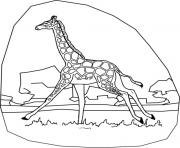 walking giraffe animal coloring pagesa98b coloring pages