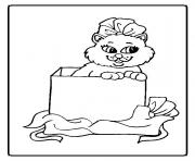Print a cat in a box animal s047f coloring pages