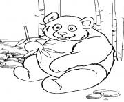 Print panda preschool s zoo animals1069 coloring pages