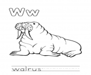 Print walrus animal free alphabet s6d06 coloring pages