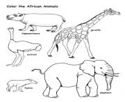 Printable wild african animal s32c1 coloring pages