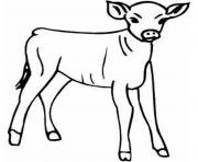 little calf farm animal s8e23 coloring pages