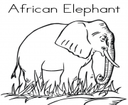 african animal s elephantb3c2 coloring pages