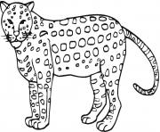 animal cheetah print out s3296 coloring pages