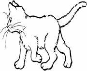 free animal s cat for kids6e9d coloring pages