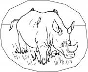free animal s wild rhino51de coloring pages