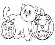 Print pumpkin cat printable halloween s1b01 coloring pages