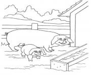 Printable pig and piglet seb90 coloring pages