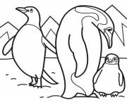 Printable penguin family 73b8 coloring pages