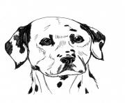 Printable dalmatian dog b6cf coloring pages
