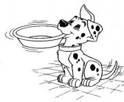 dalmatian asking for milk a1c0 coloring pages