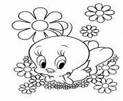 Printable cute looney tunes tweety bird s1b0d coloring pages