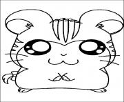 Printable cute hamster b3a2 coloring pages