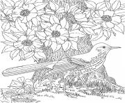 Print cool colouring for adult 2016 coloring pages