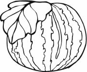 healthy watermelon fruit sd5b3 coloring pages