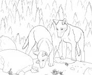 wolf s pup coloring pages