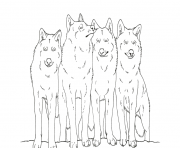 Printable animal wolf s printable coloring pages