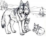 Wolf with baby wolfs coloring pages
