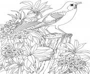 Printable beautiful bird and flower coloring pages
